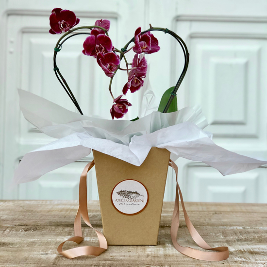 Imagem de Coração de Orquídea no Flower Bag