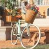Imagem de Bicicleta Vintage